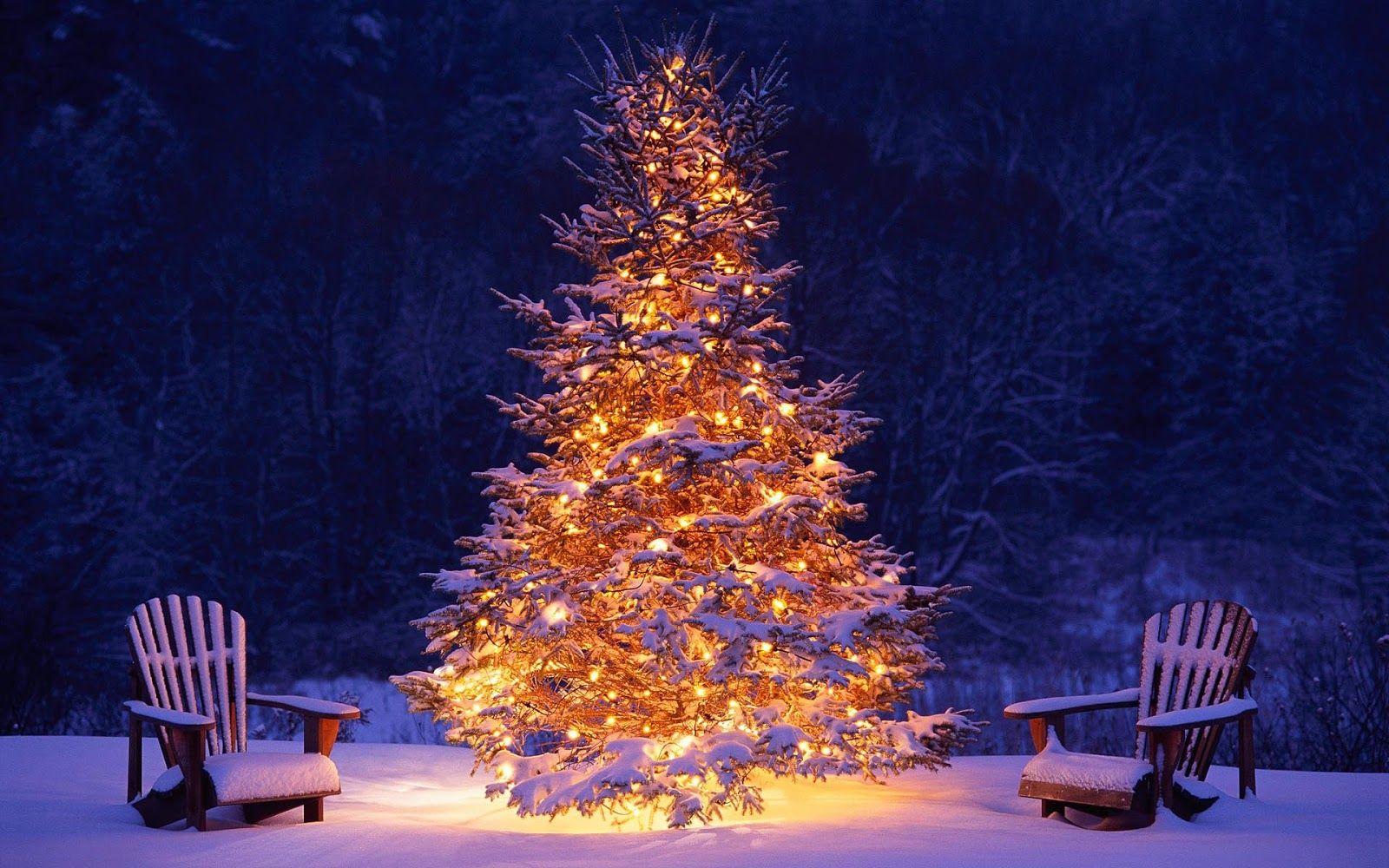 Waar vier je een witte kerst in Spanje?